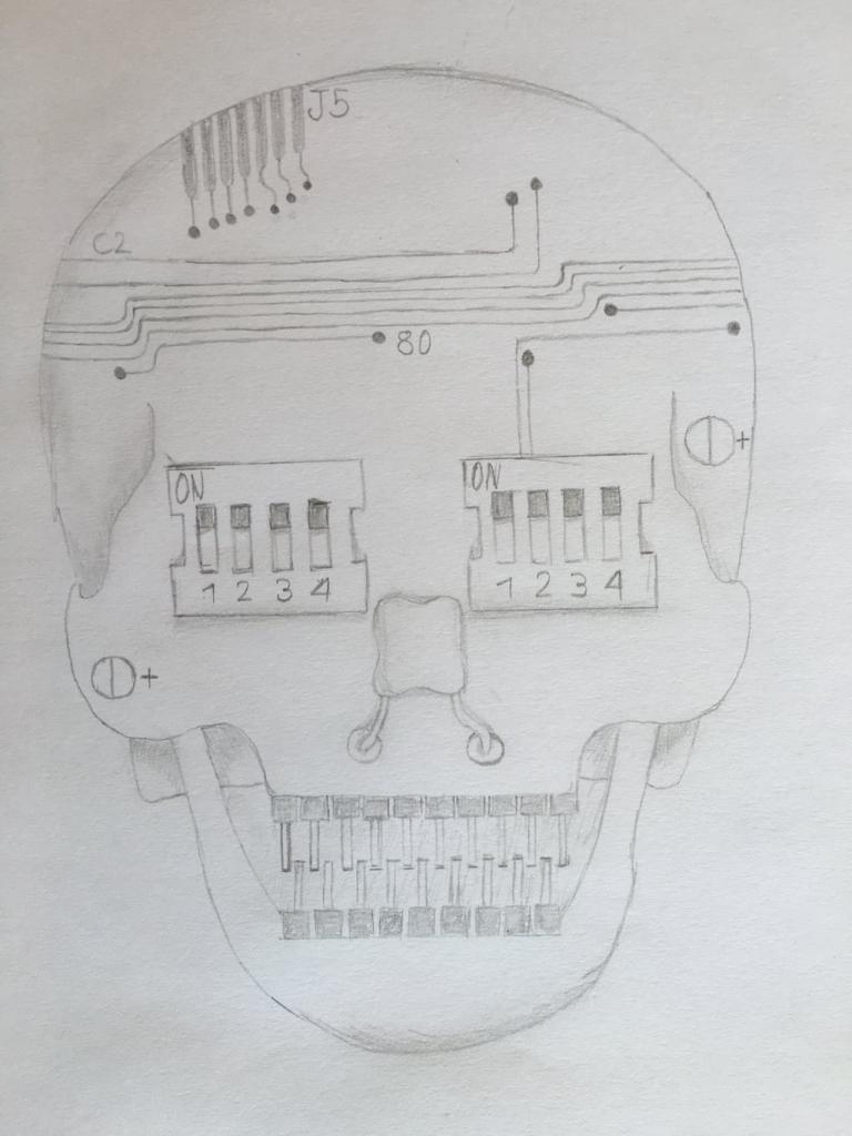 Kopfmetamorphose 02